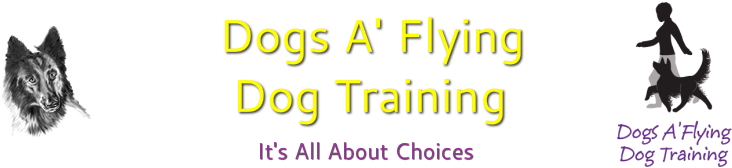 Dogs A' Flying Dog Training